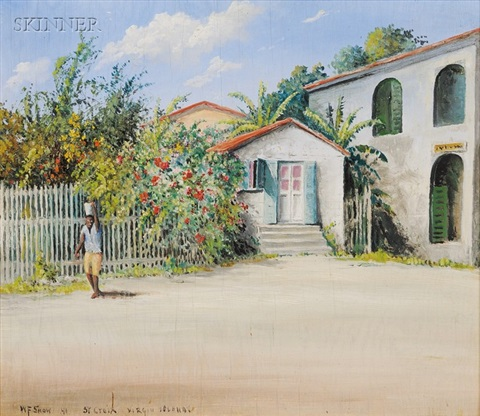 st. croix, a virgin islands view by w. francis snow