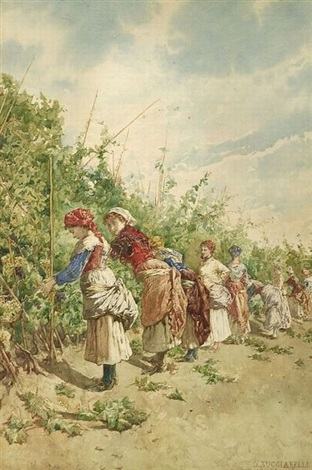 the grape harvest by daniele bucciarelli