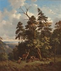 rotwild an waldrand mit blick auf einen see by wilhelm reinhardt