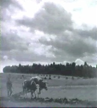 sur le champ avant l'orage by vladimir jindrich bufka