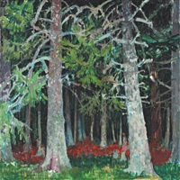 forêt by jean claude aujame