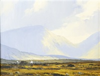 in the twelve pins, connemara by denis j. mcdowell