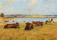 cows in the field by gunnar bundgard