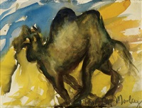 camel by malcolm morley