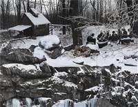 ice storm by anthony goicolea