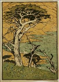 sentinel cypress, monterey bay by pedro joseph lemos