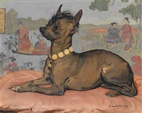 a prize winning chinese crested dog by eugène van gelder