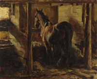 horse standing in a stall by adam sherriff scott