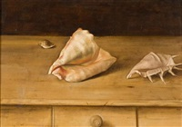 shells by bryan westwood