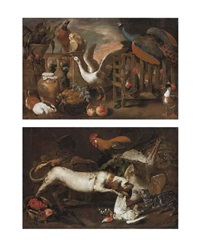 a peacock, a goose, a pheasant, rabbits, poultry and a duck, on a terrace and a hound, a cat, a cockerel and other birds, with a basket of strawberries (pair) by antonio maria vasallo