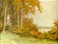 landscape with birch trees by otokar hurka