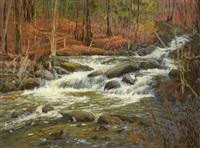 fortune creek by bruce heggtveit