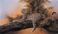 leopard in a tree by linda lemon