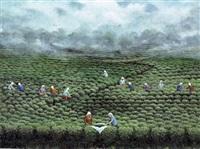 çay toplayanlar by yalcin gokcebag