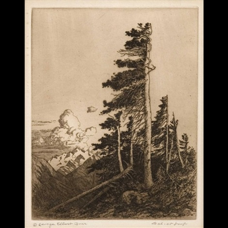 windswept spruces by george elbert burr