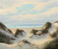 coastal scenery with dunes by wolmer zier
