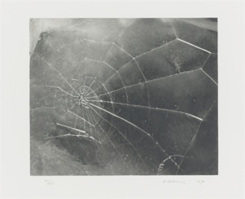 untitled web web 2 spider web screenprint lrgr 2 works by vija celmins