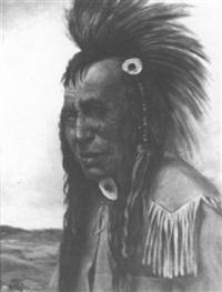 soniah-piasis, cree indian by henry metzger