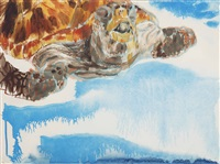schildpad by erik bart andriessen