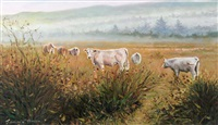 cattle grazing by senan o'brien