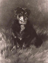 a lancashire heeler, seated on a rug by george l. harrison