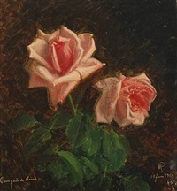 pink roses by niels peter rasmussen