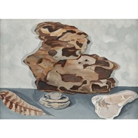 shell, stone, feather and bark by helen torr
