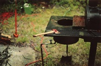 near the river at greenville, mississippi, (red axe) by william eggleston