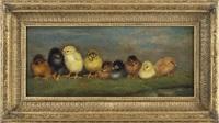 nine chicks by ben austrian