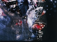 swell by marilyn minter
