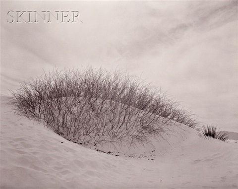 white sands, new mexico by linda connor