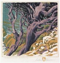 monterey cypress by gustave baumann