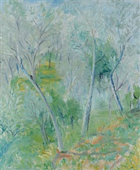 bosco in versilia by adriano spilimbergo