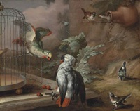 a grey parrot and an amazon parrot with cherries by a cage on a marble ledge, with sparrows and other songbirds in a landscape by william tomkins