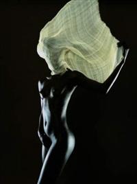 jeune femme au voile by bruno fabbris