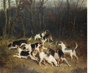 hounds in a covert by edward walter webb