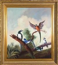 exotic birds by jeannine albert
