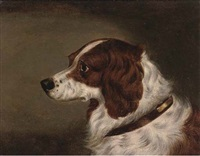 the head of a spaniel (+ the head of gundog; pair) by edwin (of bath) loder