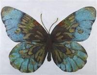 papillon by mahmoud vasefi