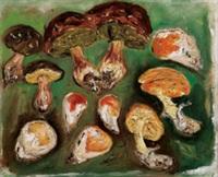 varietà di funghi by giovanni stradone