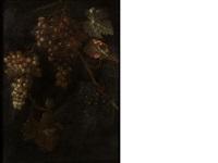 a vine of grapes by barend van der meer