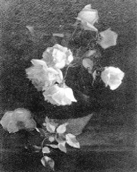 roses in a brown jug by mary augusta hiester reid