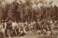 group of aborigines in hop gardens at coranderrk (from kruger's victorian scenery) by fred kruger
