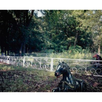wild horses of spree park spree park berlin by jimi billingsley