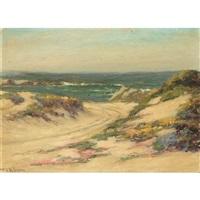 flowering dunes by william adam