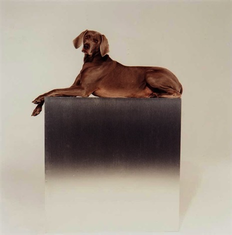 monument by william wegman
