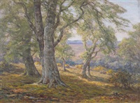 spring in the new forest by frederick golden short