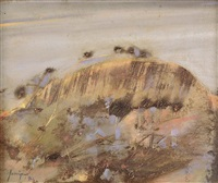 big rock at merredin by robert litchfield juniper