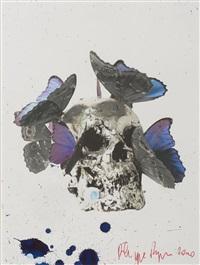 vanités aux papillons by philippe pasqua