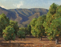 ojai orange grove by clyde aspevig